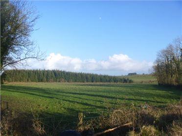 Photo of Land, Castlefrench, Ballinasloe, Co. Galway