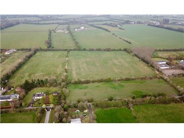 Main image of 13 Acres at Daars, Sallins, Kildare
