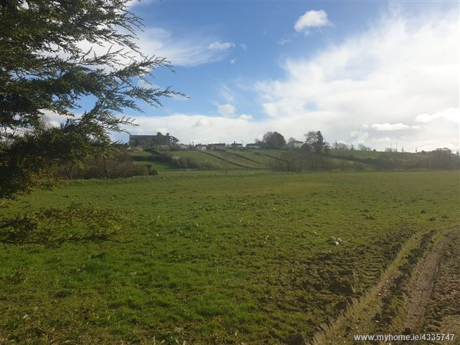 Site at Bough, Rathvilly, Carlow