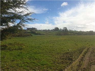 Photo of Site at Bough, Rathvilly, Carlow