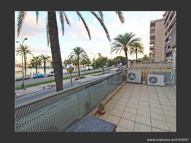 Avenida, 07014, Palma de Mallorca, Spain