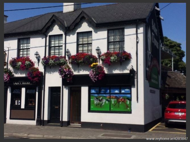 Dublin Street, Kildare Town, Co. Kildare