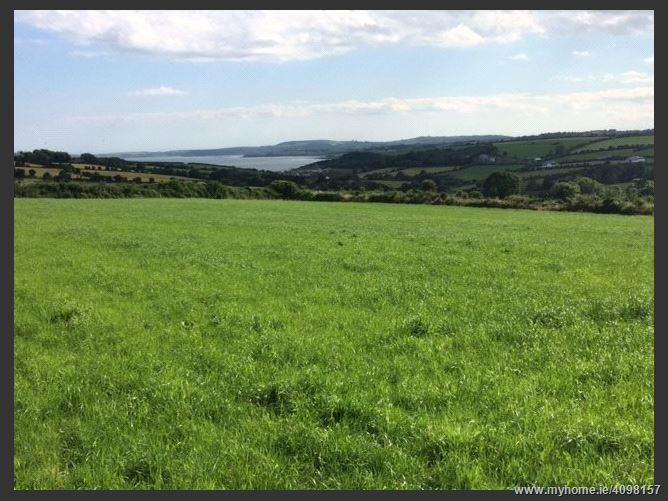 Farm, 29.1 Acres, Kilhile, Arthurstown, Co. Wexford