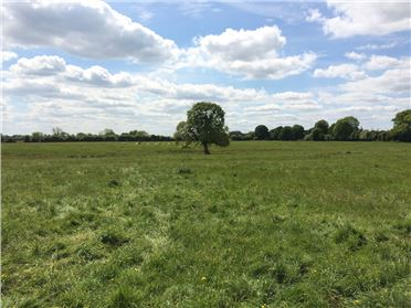Main image of 29 ACRES - MITCHELSTOWN, Athboy, Meath