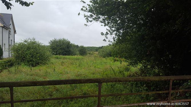 Mylerstown, Nurney, Kildare