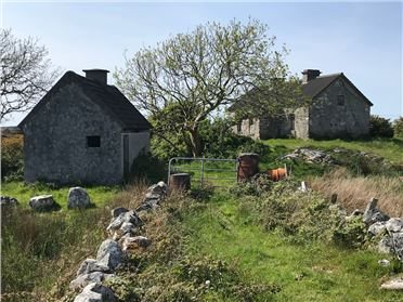 Photo of 'Tigh Padraig Berry',Pouleywerin, Lettermore, Galway