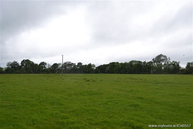 Main image for Harristown, Kilcloon, Co. Meath -Approx.24.8 acres (10 ha)