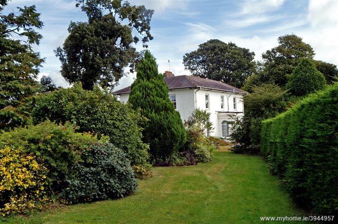 Bruree (413), Bruree, Limerick