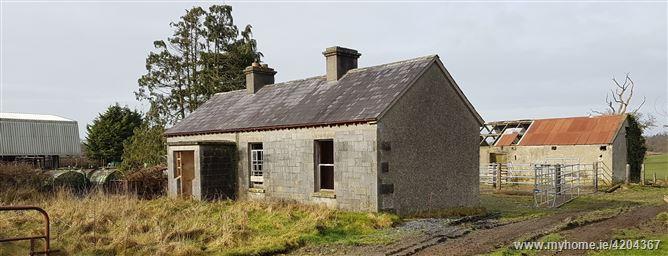 Cloonagh, Roscrea, Tipperary