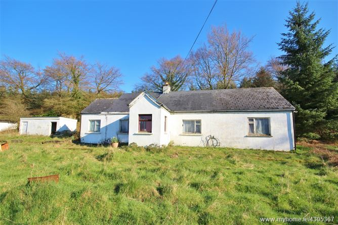 Cottage on c. 0.7 Acre/ 0.28 Ha., Deerpark, Donard, Wicklow