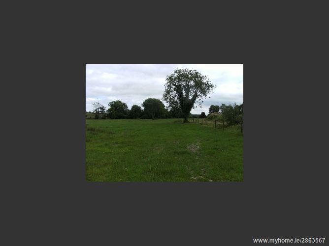 Main image of Ballynamoe, Dunkerrin, Roscrea, Tipperary