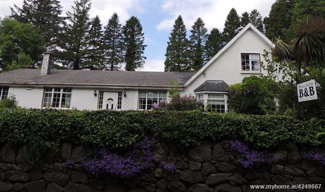 Main image for Bracken, Glendalough, Wicklow