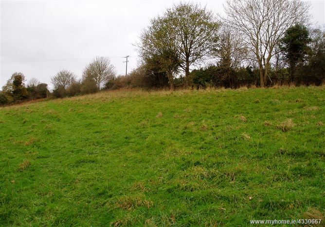 Main image for c. 1.85 acres (0.75 hectares) site at Ballynultagh, Shillelagh, Wicklow
