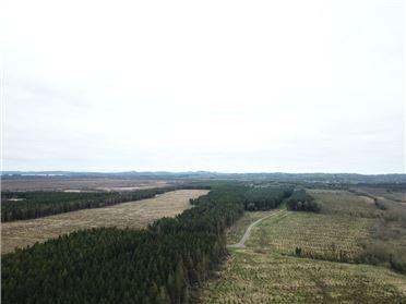 Image for Cappagh, Rathowen, Westmeath