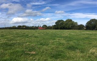 16 ACRES - BALLYGORTHA, Summerhill, Meath