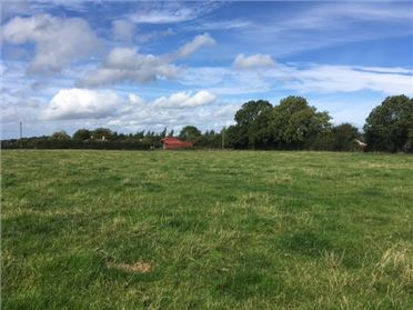 Main image of 16 ACRES - BALLYGORTHA, Summerhill, Meath