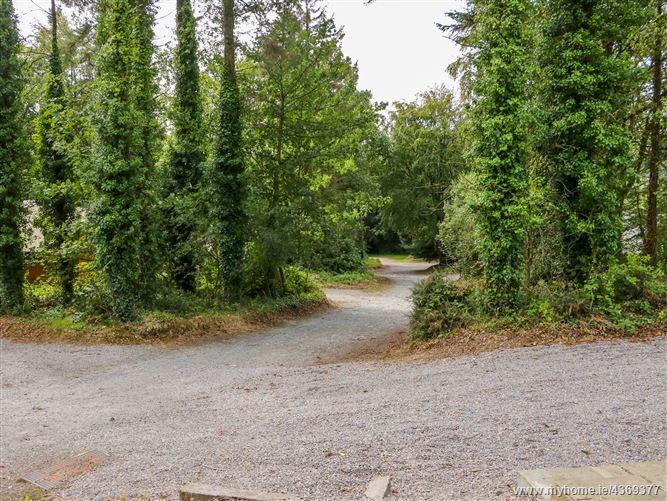 Main image for Ballyhoura Forest Luxury Homes,Ballyhoura Forest Luxury Homes, Ballyorgan, Kilfinane, County Limerick, V35HY48, Ireland