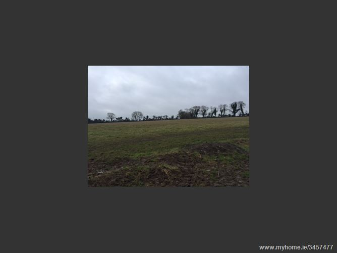 Stacumney, Celbridge, Co. Kildare - approx. 11 acres.