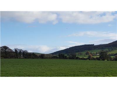 Ballinacourty, Darragh, Glenroe, Limerick