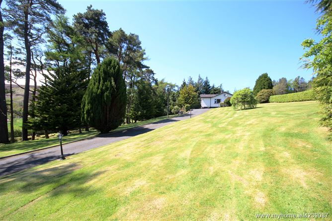 Main image for Rocky Meadow, Glencree, Enniskerry, Wicklow