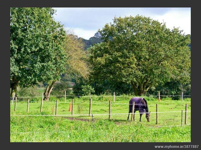 Main image for Rose Cottage Countryside Cottage,Hine Heath, Shropshire, United Kingdom