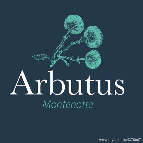 Main image for Arbutus, Montenotte, Cork