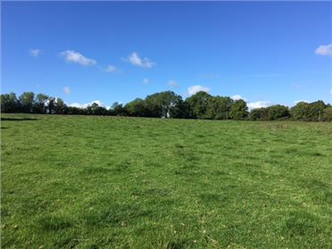 Main image of c. 13 Acres at Bogganstown, Drumree, Meath