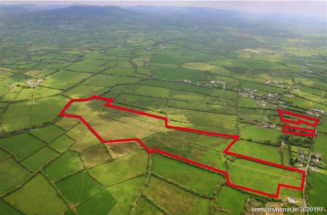 Lands at Boher , Co Limerick