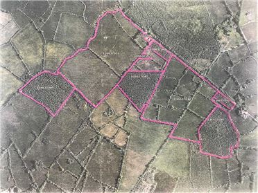 Main image of FORESTRY LANDS, Kiltycarney, Carrick-on-Shannon, Leitrim
