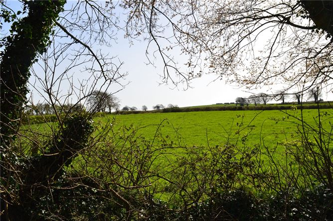 Main image for Site At Fenter,Killeigh,Co Offaly