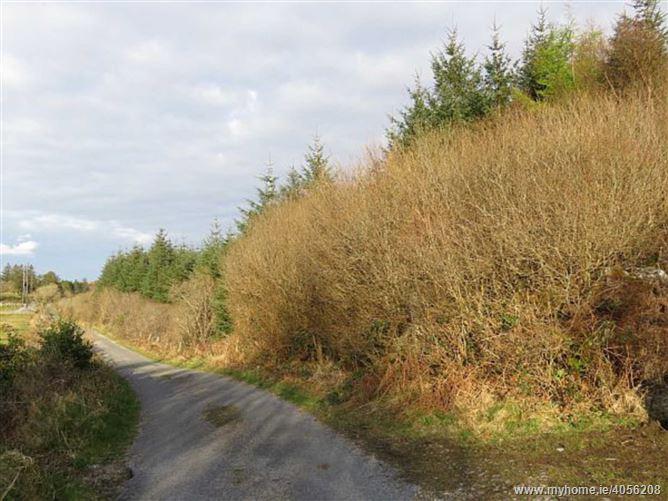 Knockaunranny, Moycullen, Galway