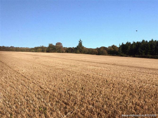 Ballynabola, New Ross, Wexford