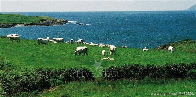 Main image for Ballyvonane House,Cashelfean Holiday Homes,  Cork, Ireland