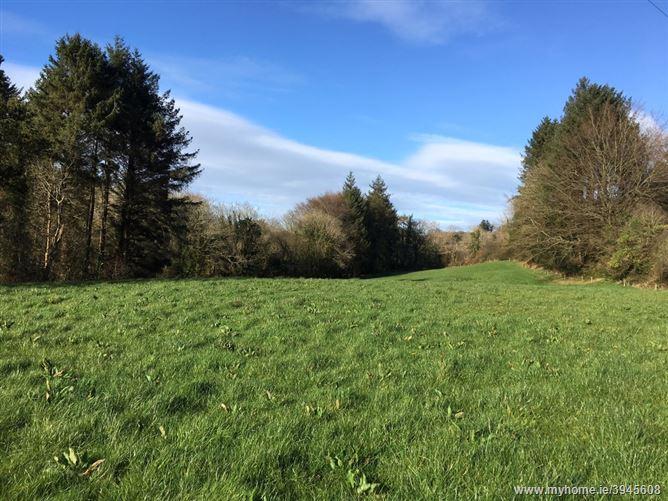 Kilmacabea, Leap,   West Cork