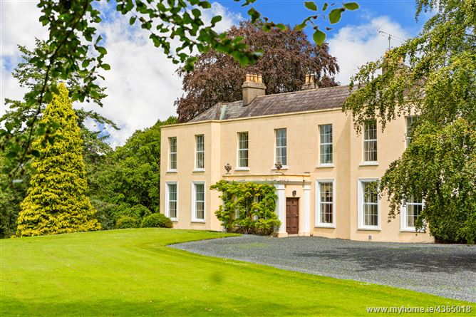 Main image for Castlesize, Sallins, Co. Kildare on approx. 36 acres