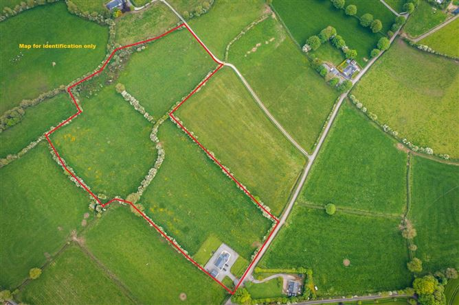 Main image for 14.4 Acres Acres, Garrymorris, Carrick-On-Suir, Carrick-on-Suir, Co. Tipperary