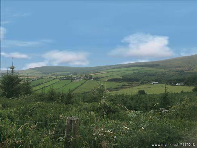 Glenogue, Gorey, Wexford