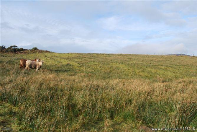 Cloncree, Moyard, Connemara, Co. Galway
