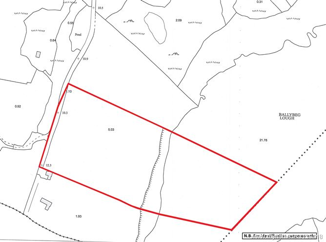 Photo of Land contained within Folio CE48597F, Ballybeg, Ennis, Co. Clare