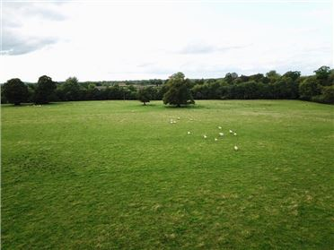 Photo of 32.247 Acres, Martinstown (In Lots), Curragh, Kildare