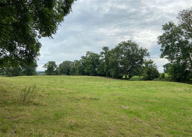 Main image for 42 acres Coolgrange, Clifden, Kilkenny