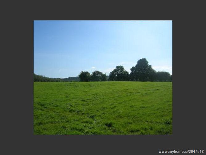 Kilgawney,Mullingar, Co. Westmeath - land approx. 37 acres