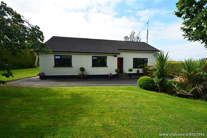 Coolteigue Hill, Bree, Enniscorthy, Wexford