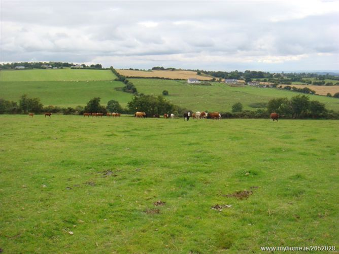 158 Acres, Friarhill & Man O'War, Dunlavin, Wicklow