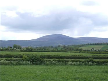 Main image of Ballinacloghy, Mullinahone, Co. Tipperary