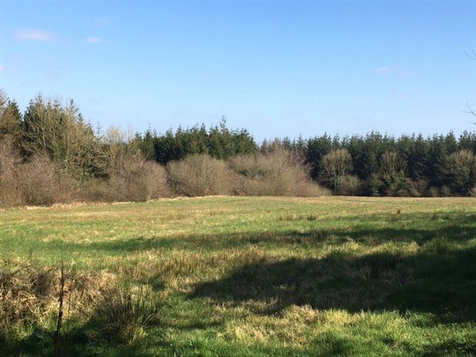 Main image for 4.52 Acre Site,Kellystown,Wolfhill,Co Laois