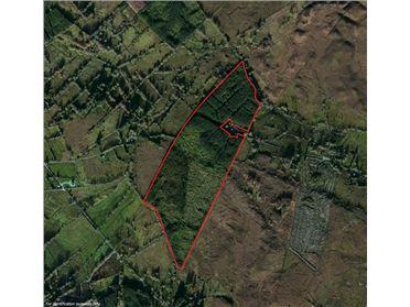Image for Forestry Lands, Kiltyclogher, Leitrim