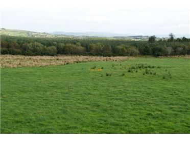 39.87 acre farm for sale at Eskaheen, Muff, Co. Donegal