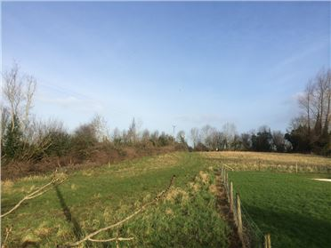 Main image of c. 4 acres, Rathcabbin, Tipperary