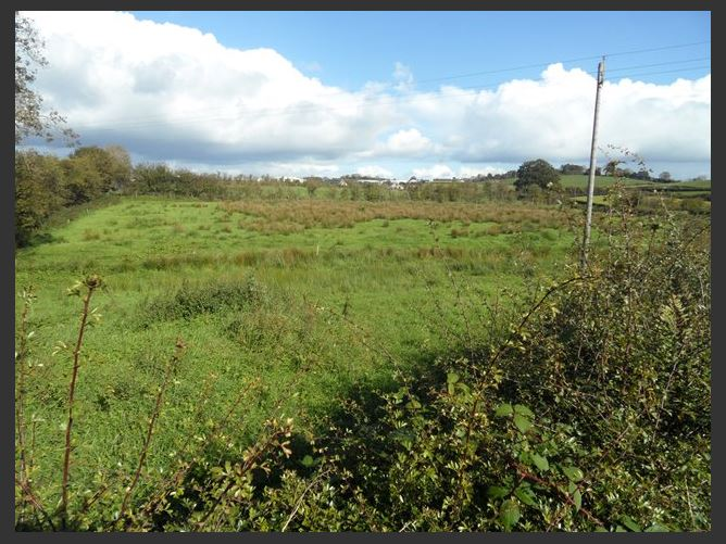 Main image for c.1.134acre site at Tullyshelferry, Dunraymond, Monaghan Town, Monaghan